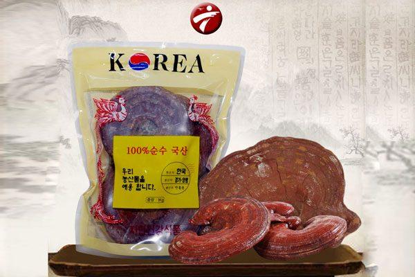 Nấm linh chi tai đỏ túi 1kg