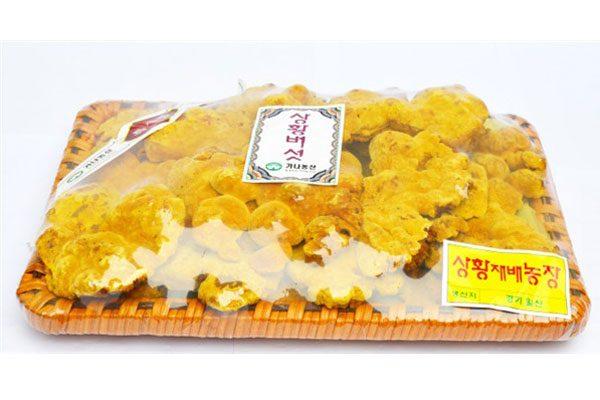 Nấm linh chi thượng hoàng Hàn Quốc